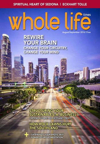 digital magazine Whole Life Times publishing software